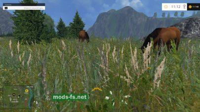 Лошади на карте Регион-04