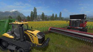 Подсолнухи, редис, соя и тополя в Farming Simulator 2017