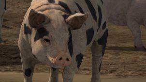 Свиньи в Farming Simulator 2017