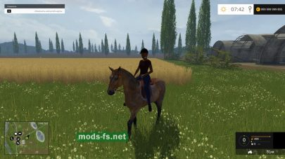 Equestrian Woman Drivable