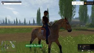 Equestrian Woman Drivable mods
