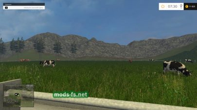 Поле для коров в Farming Simulator 2015