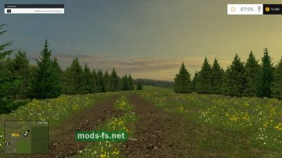 Дорога и лес на карте Новая Слобода в FS 2017