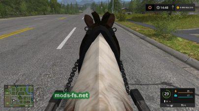 Rideable Pony