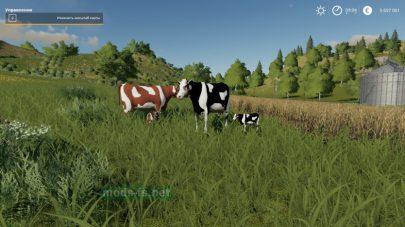 Мод на коровы для Фермер Симулятор 19