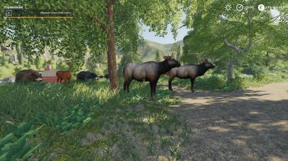 Мод на дикие животные для FS 19