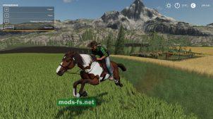 """CowboyHat"" для Farming Simulator 2019"