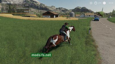 «CowboyHat» в игре FS 19