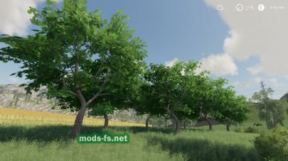 Fruits Trees