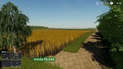 Поле на Ninghan Farms в игре FS 19
